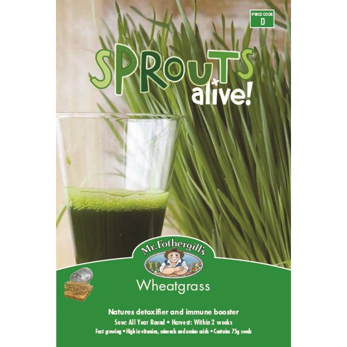 Wheatgrass Sprouts Alive image